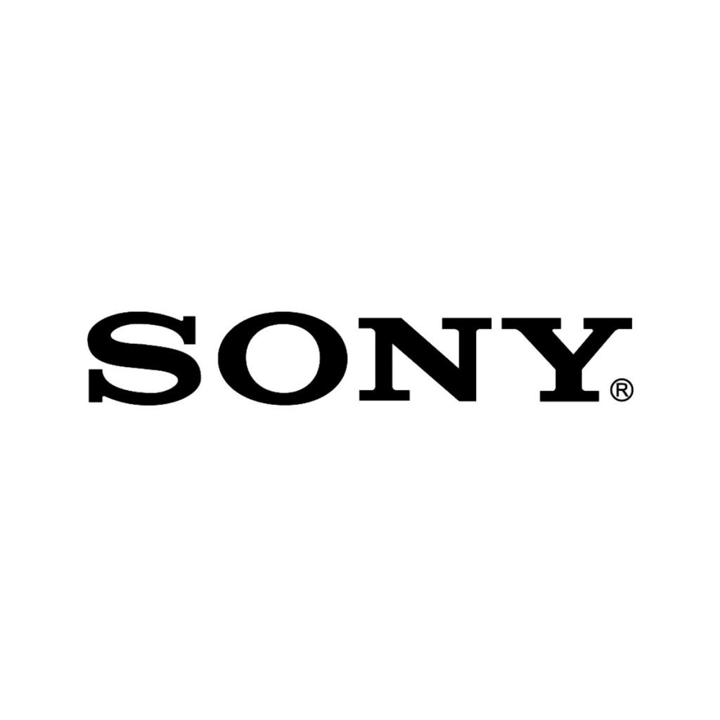 Sony E Mount